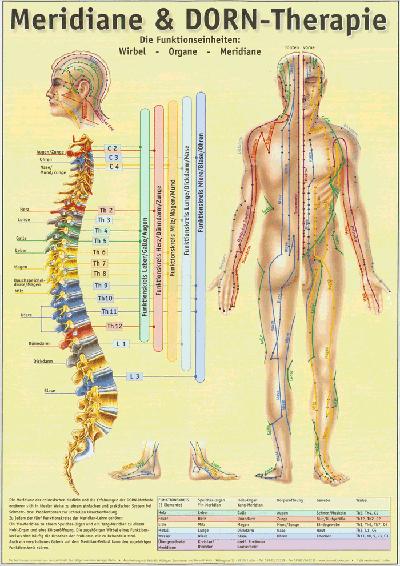 Dorntherapie-Physiotherapie-Binningen